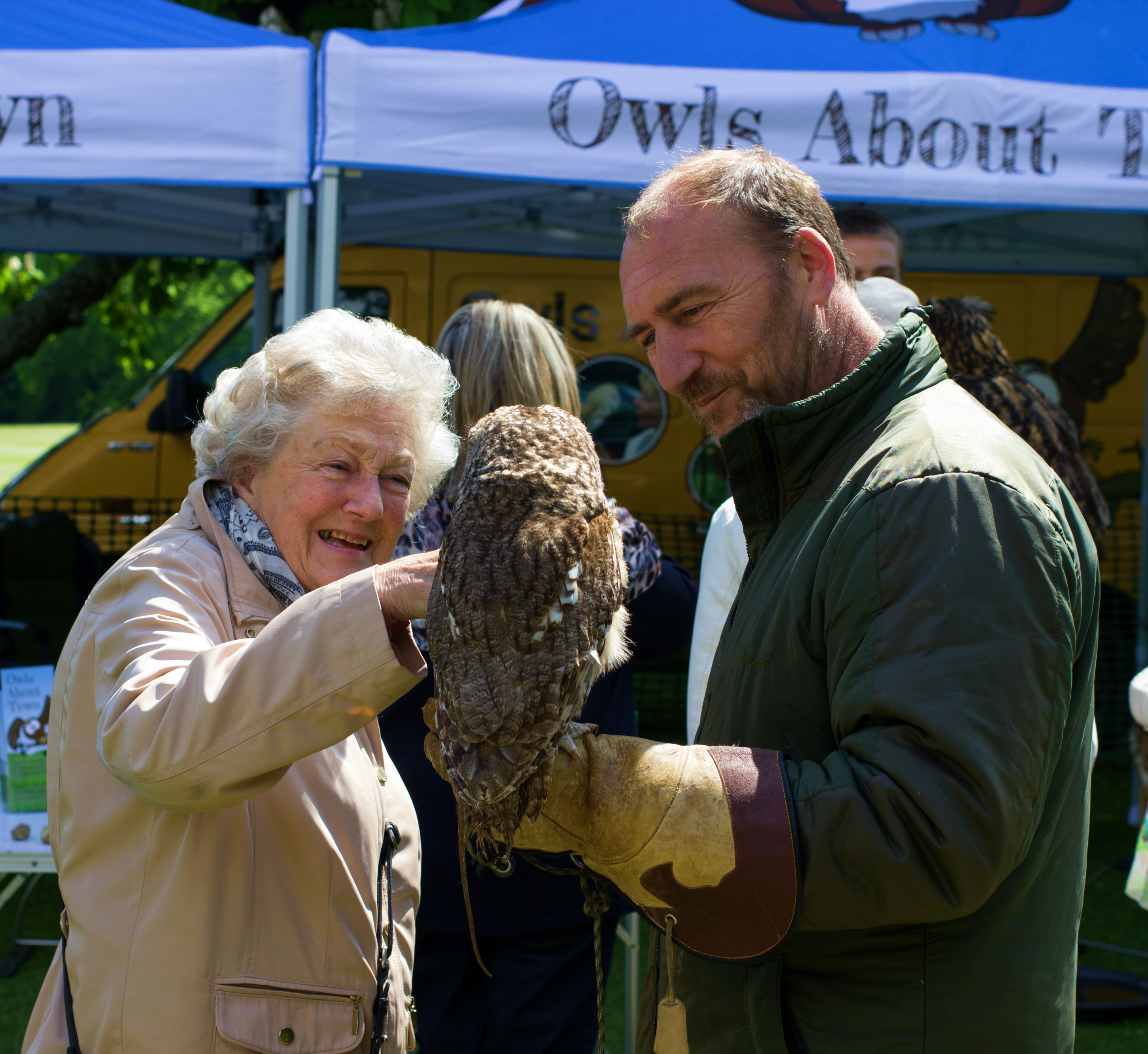 Woods Travel 45 Year Event Owls About Town